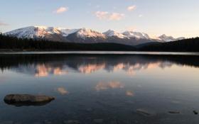 Картинка лес, горы, озеро, камень