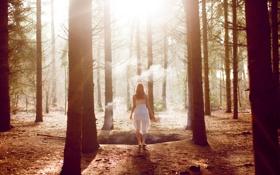 Картинка лес, девушка, деревья, дым, шатенка