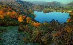 Картинка леса, осень, озеро, Англия, деревья, Cumbria, горы