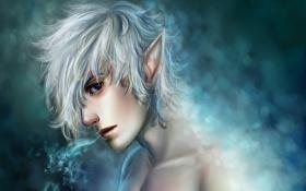 Картинка холод, искры, парень, уши, Эльф, блондин, Elf
