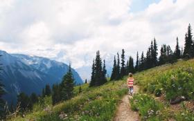 Картинка небо, ребенок, мальчик, горы. деревья
