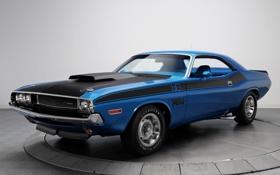 Картинка синий, фон, Додж, Dodge, Challenger, 1970, 340