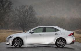 Обои обои, серебристый, F-Sport, Lexus, вид сбоку, IS 350, едан