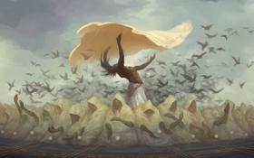 Обои птицы, танец, ритуал, арт, вороны, мужчина, плащ