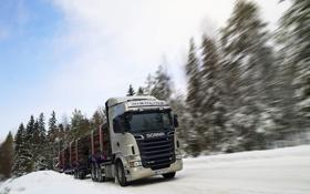 Обои Снег, Лес, Скорость, Грузовик, Scania, Лесовоз, R730