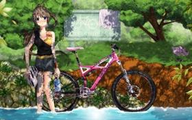 Обои лето, вода, девушка, деревья, велосипед, река, бутылка