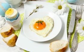 Обои fried eggs, завтрак, хлеб, bread, Breakfast, жаренная яичница, flowers