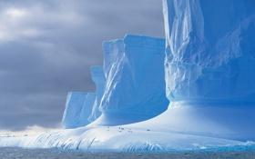 Картинка море, ледник, пингвин, Антарктида