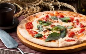 Картинка сыр, пицца, помидоры, базилик