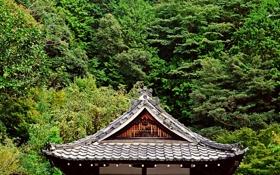 Обои крыша, зелень, деревья, Япония, сад, пагода