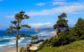 Картинка море, деревья, побережье, Haystack Rock, Oregon Coast.