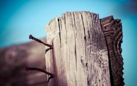 Картинка макро, забор, гвоздь