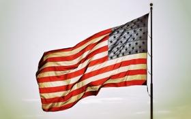 Обои star, america, flags
