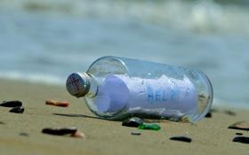 Обои beach, bottle, Message
