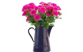 Обои цветы, чайник, розовые розы