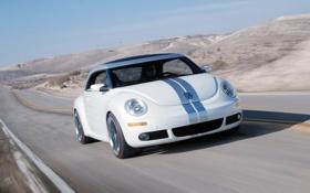 Картинка Дорога, Автомобиль, Concept Car, Volksvagen, Фольксваген, New Beetle, Ragester