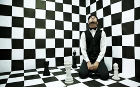 Обои ситуация, шахматы, мужчина, безумие