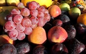 Обои виноград, фрукты, персики, сливы