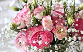 Картинка фото, Цветы, Букет, Лютик, Эустома