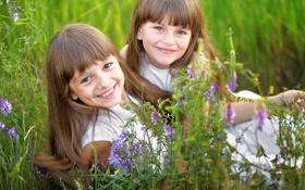 Обои трава, цветы, девочки, улыбки
