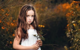 Обои цветок, взгляд, девочка