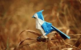 Обои осень, оригами, autumn, боке, bokeh, origami, сойка