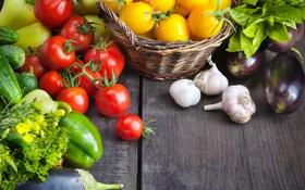 Картинка зелень, баклажаны, перец, овощи, помидоры, огурцы, чеснок