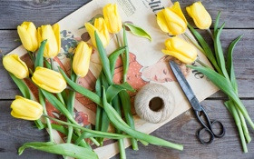Обои цветы, весна, желтые, тюльпаны, нитки, ножницы