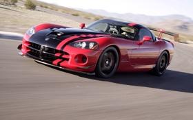 Обои drive, road, скорость, speed, Dodge