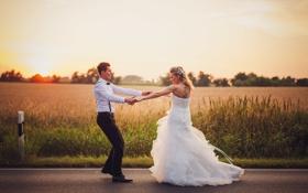 Обои дорога, поле, небо, закат, пара, невеста, свадьба