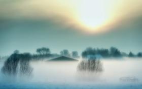 Картинка зима, пейзаж, туман