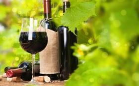Обои бокал, красное, штопор, вино, виноград