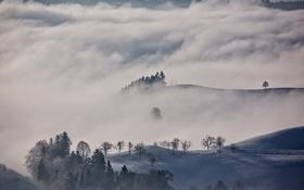 Картинка зима, облака, снег, деревья, горы