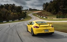 Обои Porsche, Cayman, порше, GT4, кайман