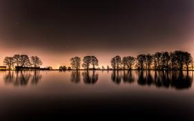Картинка звезды, деревья, ночь, огни, озеро, дом, пруд