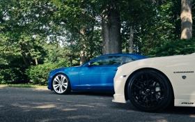 Обои синий, камаро, Chevrolet, Cordon, CR-1, шевроле, white
