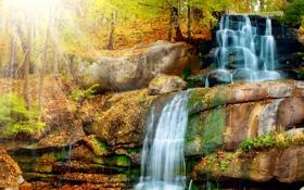 Картинка осень, лес, листья, лучи, свет, деревья, скалы