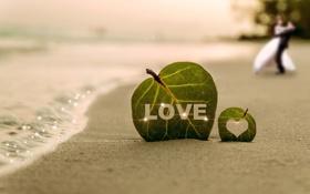 Картинка песок, листья, берег, побережье, сердце, волна, пара