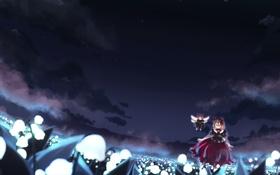 Обои поле, звезды, облака, цветы, ночь, девушки, крылья