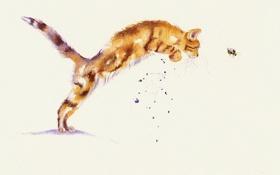 Обои кошка, кот, игра, акварель, охота, пчёлка