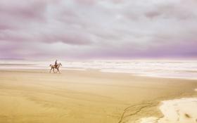 Обои море, пейзаж, всадник