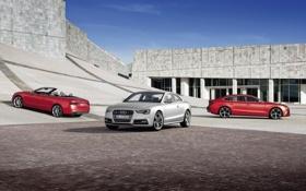 Обои Audi, ауди, здание, купе, кабриолет