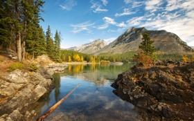 Картинка осень, небо, листья, деревья, горы, Канада, Альберта