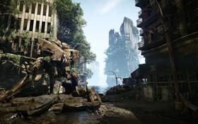 Обои город, Робот, джунгли, разрушение, руины, Crysis 3