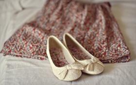 Картинка одежда, обувь, юбка, туфли, балетки