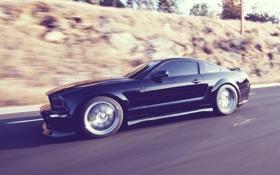 Обои дорога, скорость, Mustang, Ford, Black
