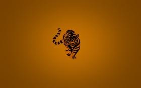 Обои оранжевый, тигр, минимализм, полосатый, minimalism, tiger, orange