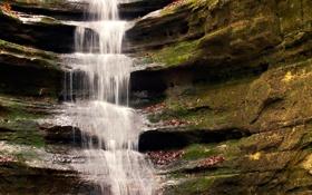 Обои ручей, водопад, мох, каскад