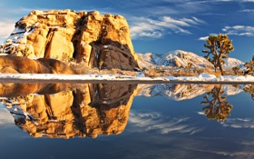 Картинка пейзаж, америка, камень, озеро, растения, природа, Joshua tree national park