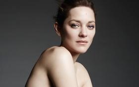 Картинка бренд, Marion Cotillard, Dior, февраль 2014